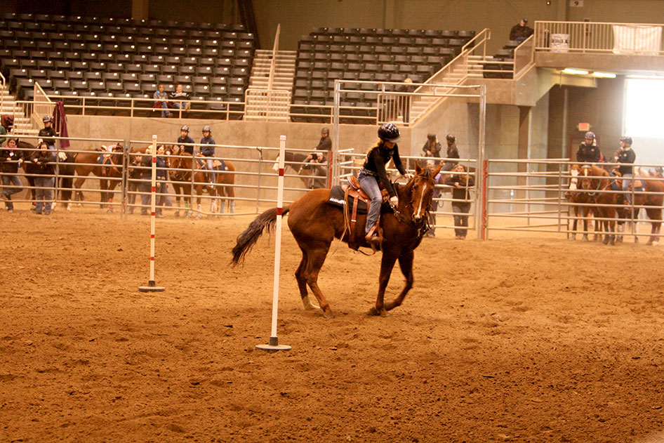 2014-02-25-equestrian-team-56