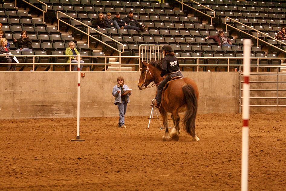 2014-02-25-equestrian-team-63