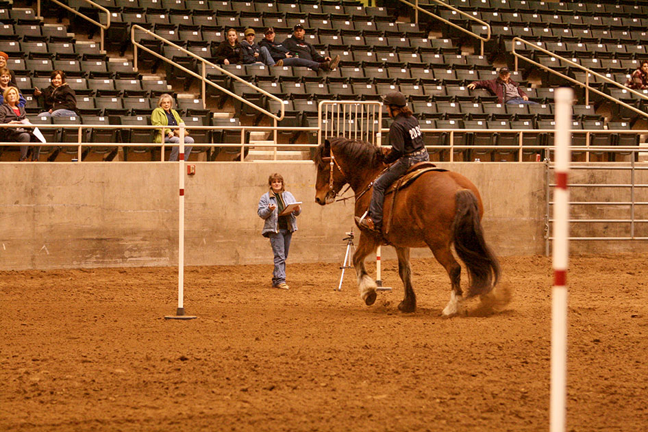 2014-02-25-equestrian-team-64