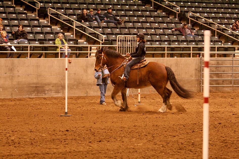 2014-02-25-equestrian-team-66