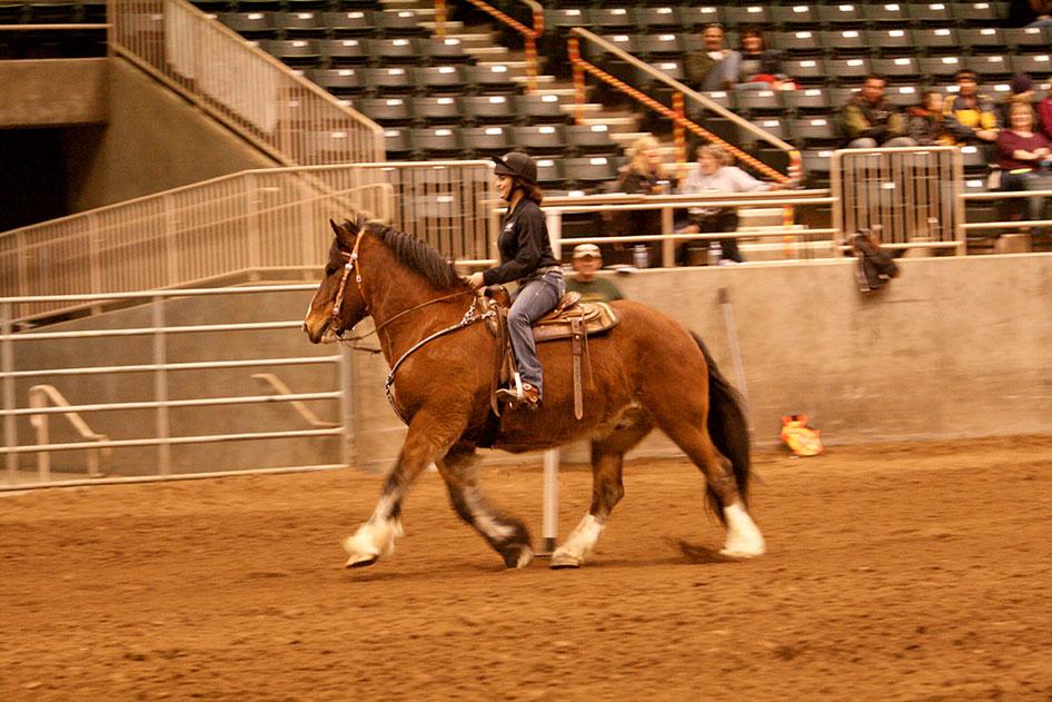 2014-02-25-equestrian-team-69