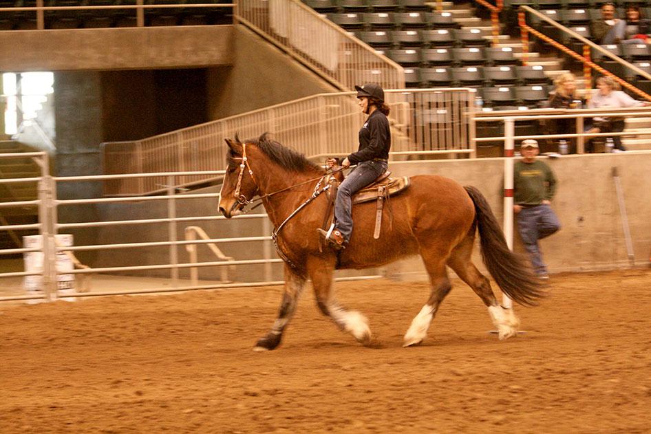 2014-02-25-equestrian-team-70