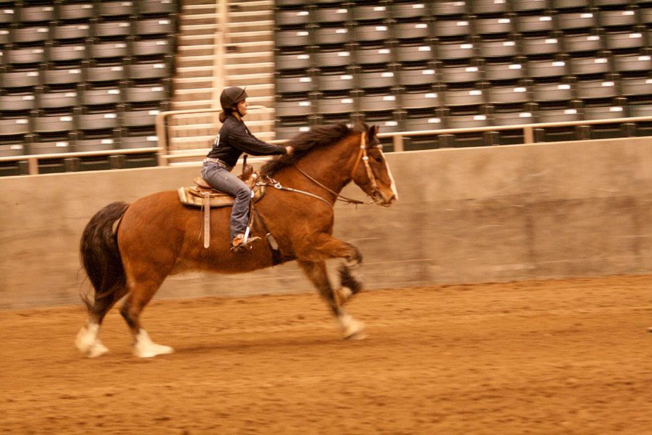 2014-02-25-equestrian-team-71