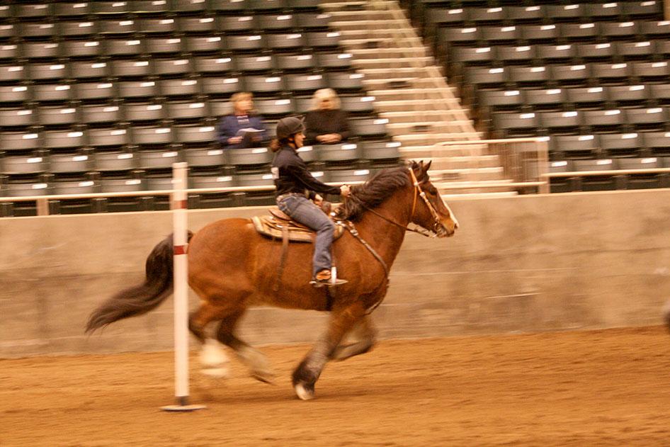 2014-02-25-equestrian-team-72