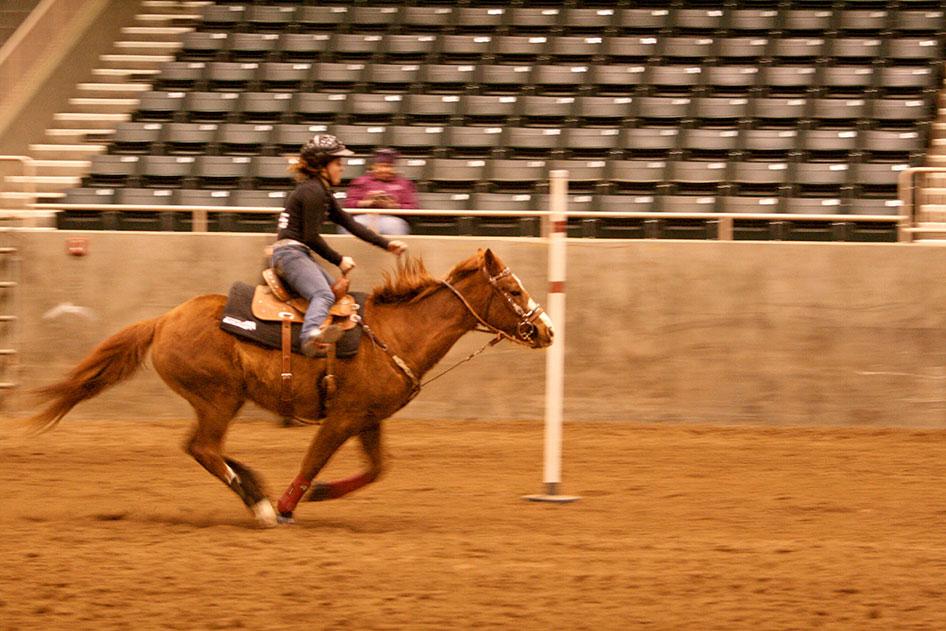 2014-02-25-equestrian-team-82