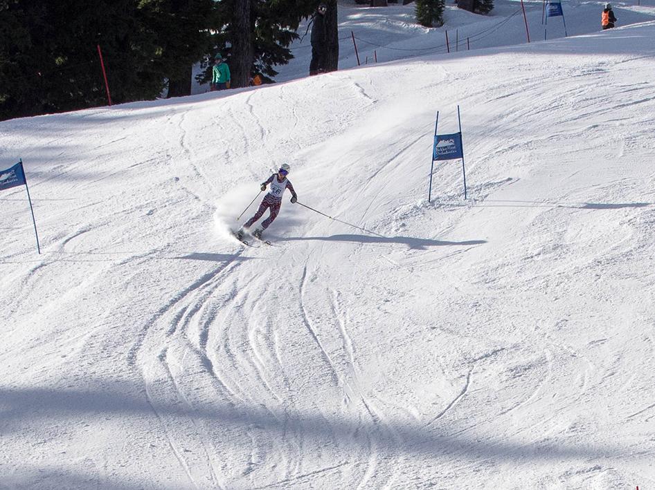 2015-alpine-20