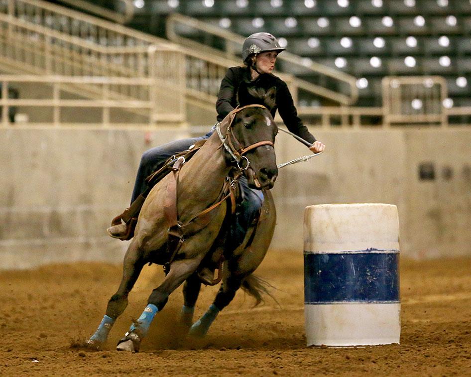 2017-equestrian-season-03