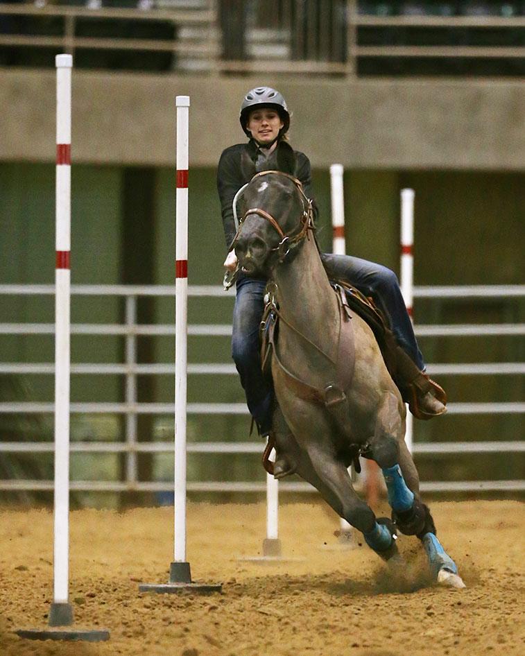 2017-equestrian-season-05