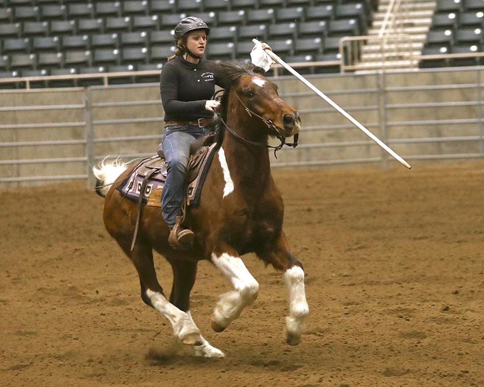 2017-equestrian-season-12