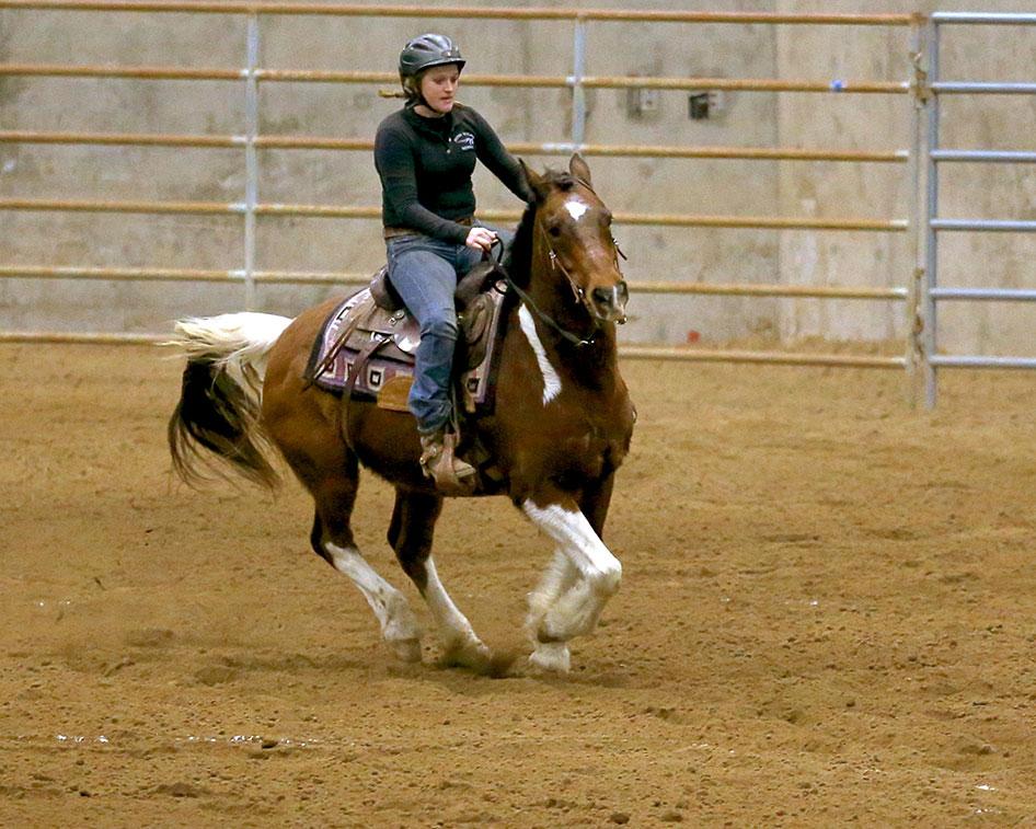 2017-equestrian-season-13