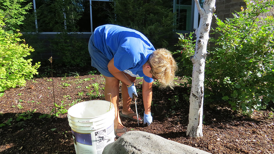 2014-08-29-Staff-Grounds-Cleanup-Day-02