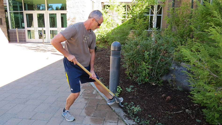 2014-08-29-Staff-Grounds-Cleanup-Day-15